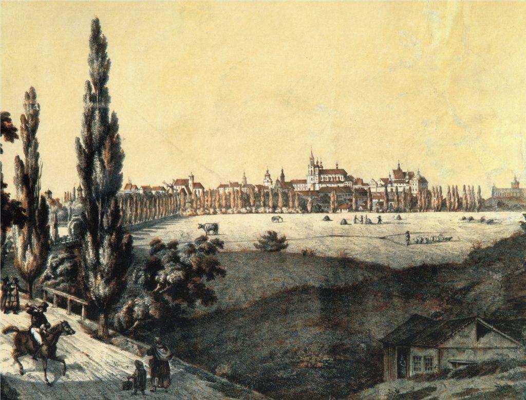 Widok Lublina odstrony traktu zamojskiego (1847)