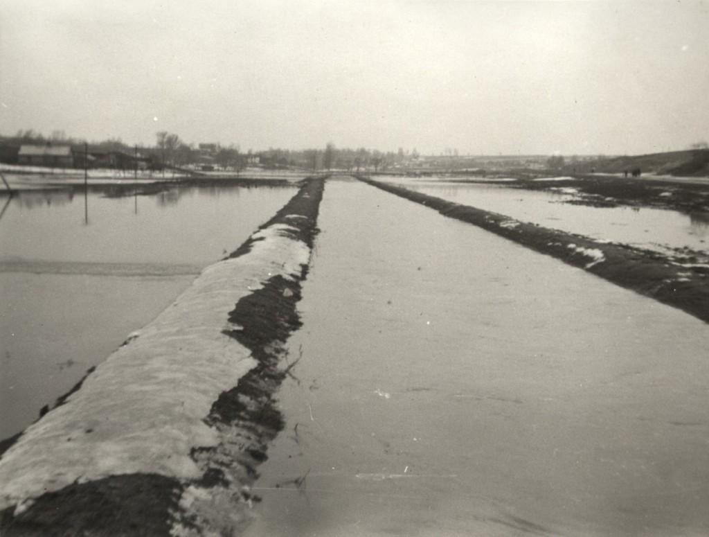 Rzeka czechówka (2)