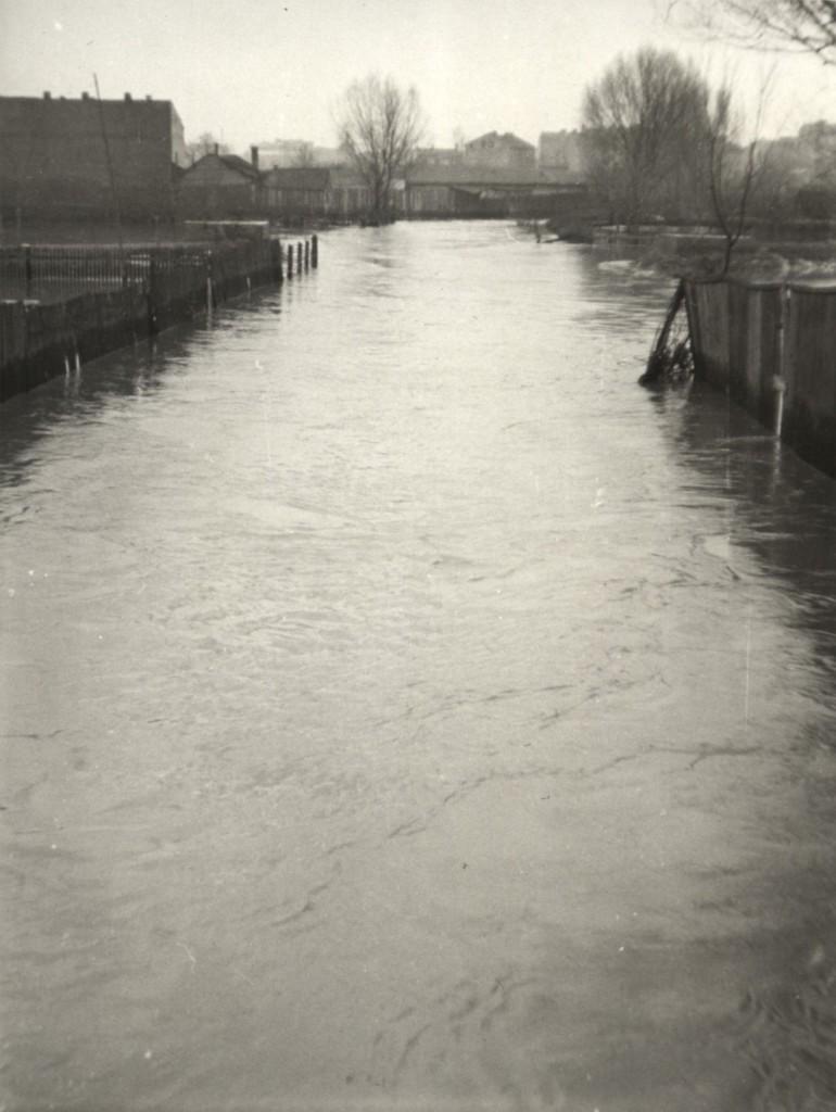 Rzeka czerniejówka (2)